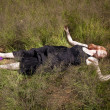 Girl lying in Grass - Stock Photo