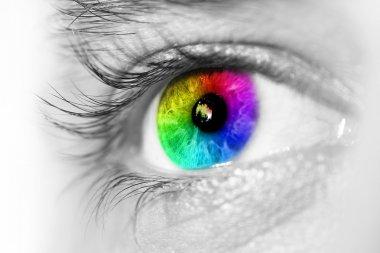 Spectrum multicolored Eye Macro