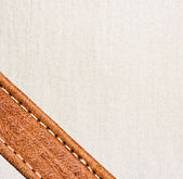 Leather and textile background — Stockfoto