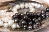 Sink and the white and black pearls — Foto Stock