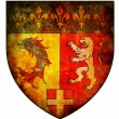 Rhone alpes coat of arms — Stock Photo