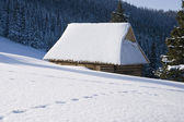 A snow-covered hut in the glade Rusinowa — Stock Photo