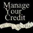 Royalty-Free Stock Photo: Manage your credit, isolated words with American notes