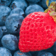 Fresh strawberry with blue berry - Stock Photo