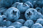 Fresh blue berries group — Stock Photo