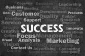 Success concept with other related words on retro background — Stock Photo
