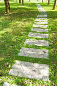 Stone walkway through forest — Stock Photo