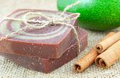 Home-made soap with avocado and cinnamon sticks — Stock Photo