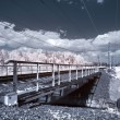 Infrared photograph. Bridge — Stock Photo