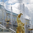 peterhof palace — Stock Photo