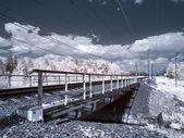 Infrared photograph. Bridge — Stock Photo