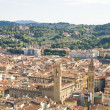 Florence from the bird flight — Stockfoto