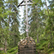 Stock Photo: Bow cross