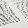 Fragment of Scroll of the Law (Sefer Tora) - Stock Photo