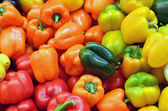 Close up of colorful peppers — Stock Photo