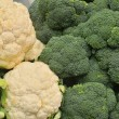 Close up of cauliflower and broccoli — Stock Photo
