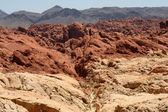 Valley of Fire Nevada — Stock Photo