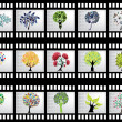 Film strip with 15 tree silhouettes — Stock Vector