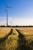 Wind turbines on a field — Stock Photo