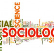 Stock Photo: Sociology in word tag cloud