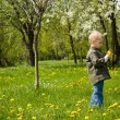 Boy playing with flowers — Stock Photo