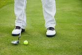 игроком в гольф обувь — Стоковое фото