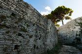 Antiguas murallas — Foto de Stock
