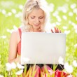 Woman with a laptop — Stock Photo #8834190