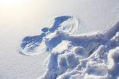 снежный ангел — Стоковое фото