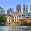 Binnenhof Palace - Dutch Parlament in the Hague - Stock Photo
