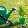 Gardening tools and flowers - Stock Photo