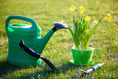 Gardening tools and flowers — Stock Photo