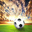 Football, soccer ball on green grass — Stock Photo