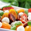 Tomato and mozzarella salad — Stock Photo #10556741