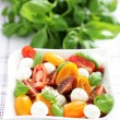 Tomato and mozzarella salad — Stock Photo #10556773