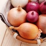 Onions — Stock Photo #8696609