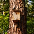 Royalty-Free Stock Photo: Birdhouse on a tree trunk