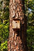Birdhouse on a tree trunk — Stock Photo