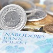 Stock Photo: Polish currency (PLN)