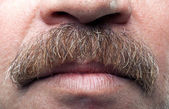 Closeup mustaches and closed mouth of mature caucasian man — Stock Photo