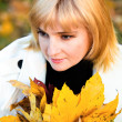 Portrait of pretty woman in autumn park — Stock Photo #8095064