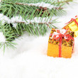 Stock Photo: Branch of Christmas tree with box gift golden