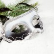 Branch of Christmas tree with box Venetian mask — Stock Photo