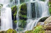 与树木和岩石在山中瀑布 — 图库照片