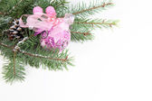 Branch of Christmas tree with ball and pinecone — Stock Photo