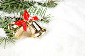 Branch of Christmas tree with bells golden — Stock Photo