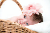 Portrait newborn baby in basket — Stock Photo