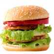 Hamburger — Stock Photo #9946294
