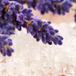 Lavender flowers and the bath salt - beauty treatment — Stock Photo