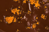 Homemade chocolate with orange — ストック写真